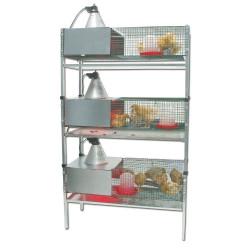 Kit 3 cages éleveuses